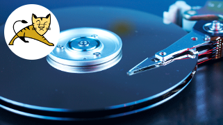Hosting File System Backup
